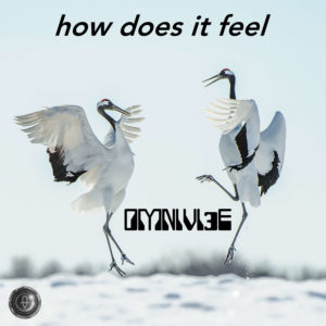 How Does It Feel by Omnivi3e feat. T Jae Cole